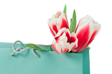 pink and white tulips in the paper bag
