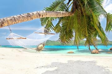 Hängematte an schräger Palme - Seychellen