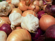 Collection of different kinds of eatable onions.
