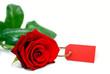 rotes Liebesgeschenk mit Textfreiraum auf rotem Kärtchen