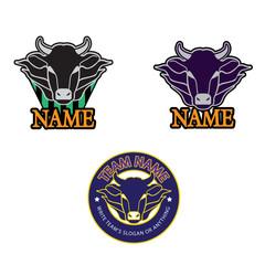 bull_logo