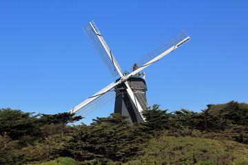 Windmill in Golden Gate Park