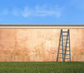 ladder against a grunge wall in a garden