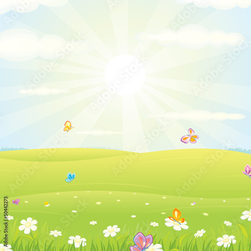 Summer Meadow Landscape