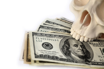 Skull with dollars