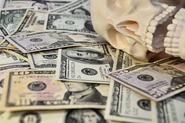 Skull with dollars background
