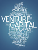 "Word Cloud ""Venture Capital"""
