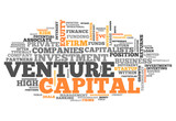 "Word Cloud ""Venture Capital"""