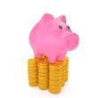 Piggy bank on the Points coins that are on