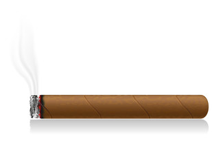 burning cigar vector illustration