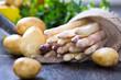 Spargel frisch 2 Wahl mit neuen Kartoffeln