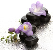 Spa stones and purple flower, on wet background