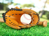 Baseball glove, bat and ball on grass in park
