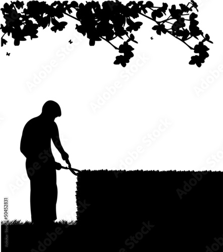 Gardener trimming a hedges with big shears silhouette