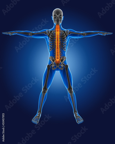 3D medical man with skeleton