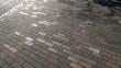 Bike shadows in Holland