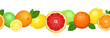 Horizontal seamless background with citrus fruits. Vector.