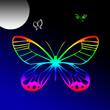 Papillons sous la lune, arc-en-ciel