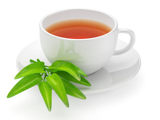 Teacup with leafs isolated