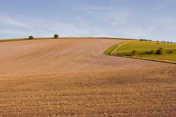 Farmland in Wiltshire