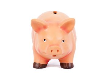 hucha de cerdo aislada