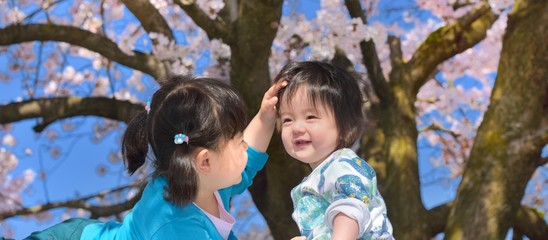 桜の下で遊ぶ二人