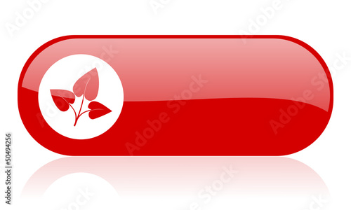 eco red web glossy icon