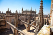 Roof and spires of the Saint Mary cathedral in Seville
