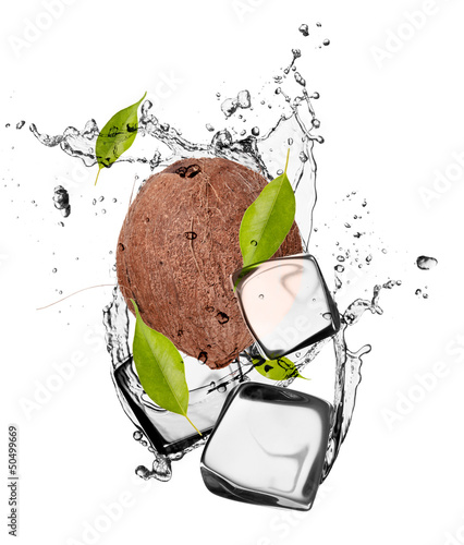Poster In het ijs Coconut with ice cubes, isolated on white background