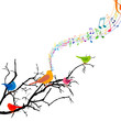 Vector Illustration of a Branch with Singing Birds
