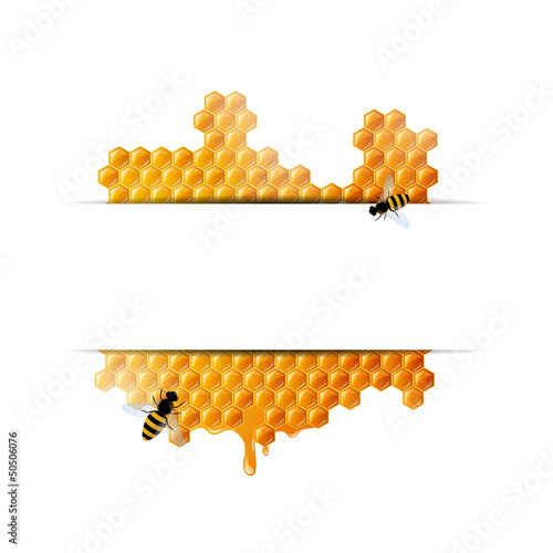 Vector Illustration of a Honey Background