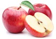 canvas print picture - Red apple with leaf and slice.