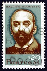 Postage stamp Portugal 1966 Camara Pestana, Bacteriologist