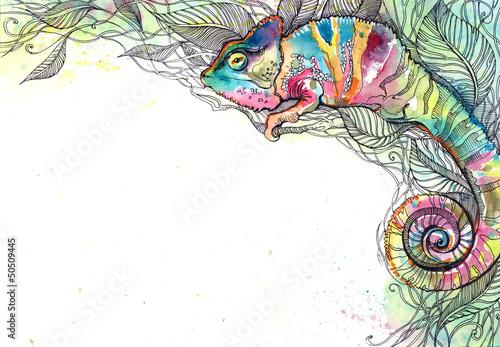 chameleon © okalinichenko