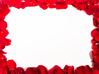 Romantic Red Rose petal frame