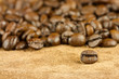Coffee seed with other seeds on backgrounds