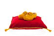 Royal red velvet pillow with wooden clogs