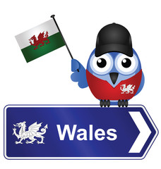Comical Wales sign
