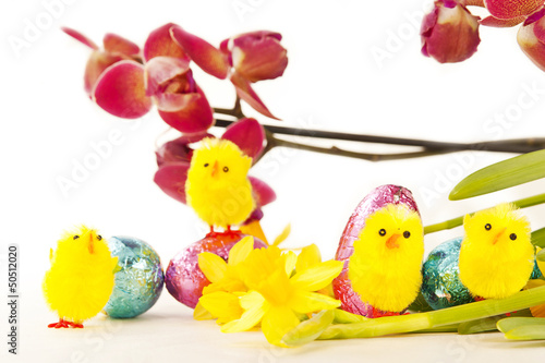 Easter Decorations with Orchid and Chicks