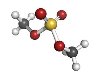dimethyl sulfate methylating agent, molecular model