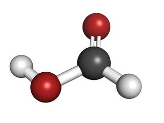 Formic acid ant sting chemical, molecular model.