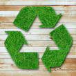 Recycle symbol from grass on wood background