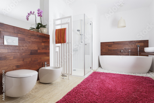 Bathroom interior with exotic wood