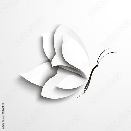 motyl-bialej-ksiegi