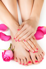 female hands with fragrant rose petals and towel. Spa