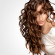 Curly Hair. High quality image.