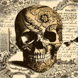 Vintage Skull Background