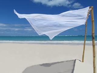 transparencias a orillas delmar en verano