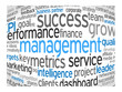 MANAGEMENT Tag Cloud (leadership performance decision-making)