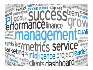 MANAGEMENT Tag Cloud (leadership performance decision-making)